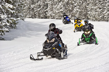 Snowmobilers riding along trail